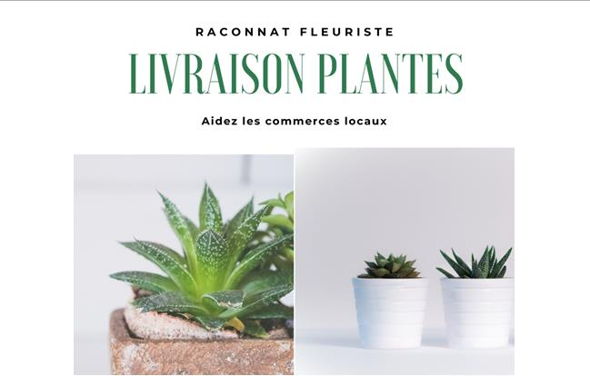 Livraison de plantes Raconnat